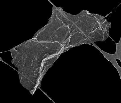 氧化石墨烯膜,氧化石墨烯纸